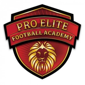 Pro Elite Football Academy logo