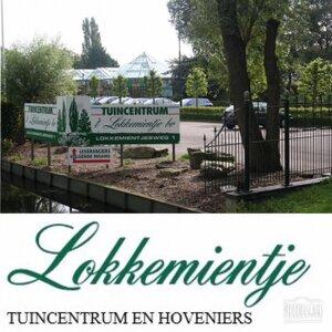 Tuincentrum Lokkemientje logo