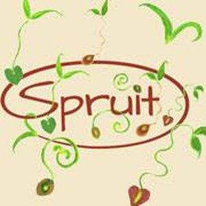 Natuurvoedingswinkel Spruit logo