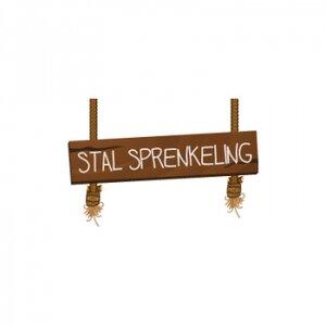 Pensionstal-Stoeterij Sprenkeling logo