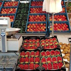 Stichting Markten Alkmaar image 2