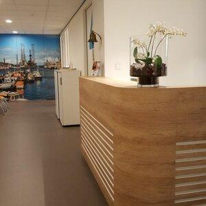 Fysiotherapie Zeeweg image 2