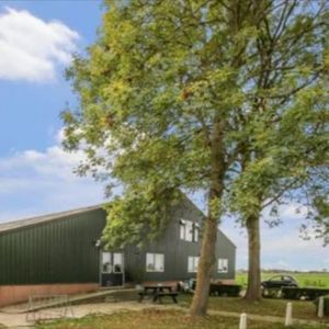 Paardenpension Dyma image 1