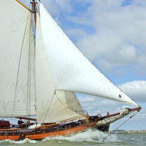 Catharina van Mijdrecht image 6