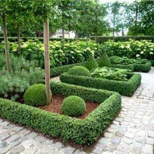 Tuincentrum Lokkemientje image 3