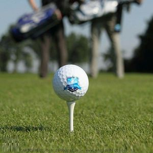 Eccles Golf Academy image 1
