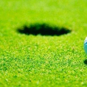 Eccles Golf Academy image 2